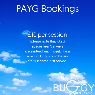 Buggy Bootcamp Price Increase (1)